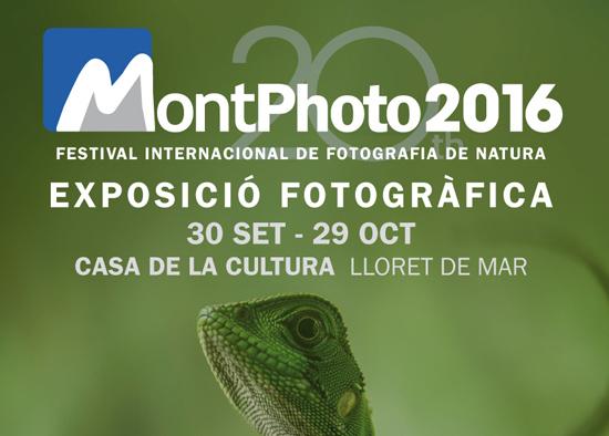 post-expo-montphoto